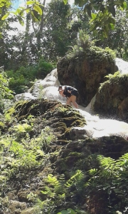 My adventurous wife taking the wee one for a stroll up a waterfall.